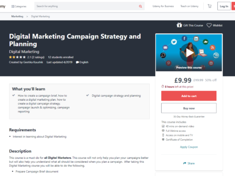 Digital Marketing Campaign Strategy and Planning