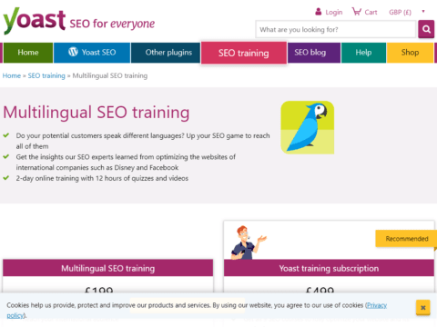 Multilingual SEO training