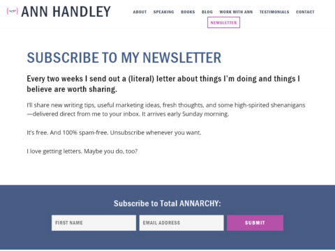 Ann Handley Newsletter