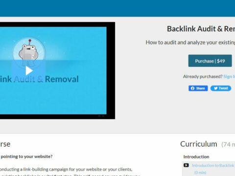 Backlink Audit & Removal