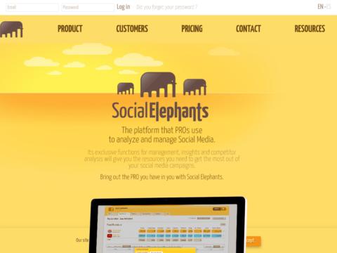 Social Elephants